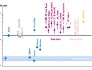 Rapport D/H par l'instrument Rosina sur Rosetta