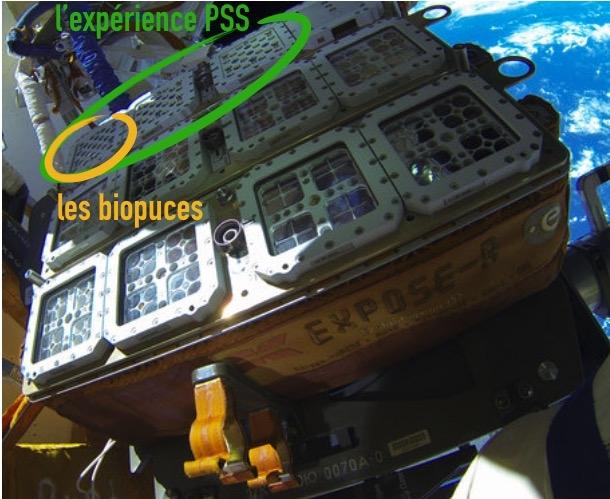 L'expérience PSS d'Expose-R2